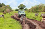 Enrichment Journey to South Africa & Victoria Falls